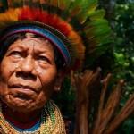 indigenismos