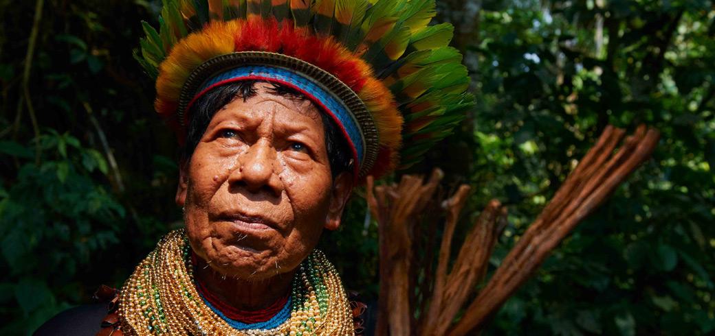 Ejemplos de Indigenismos